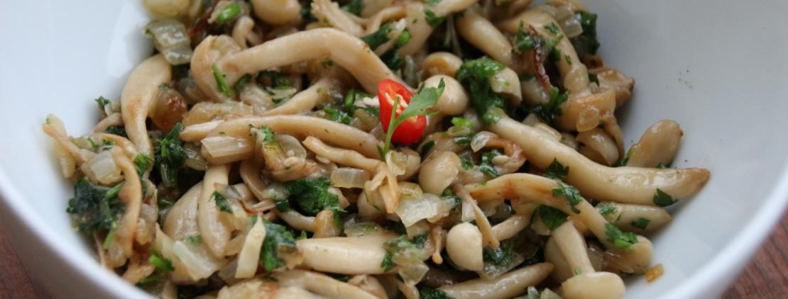 рецепты с азитскими грибами